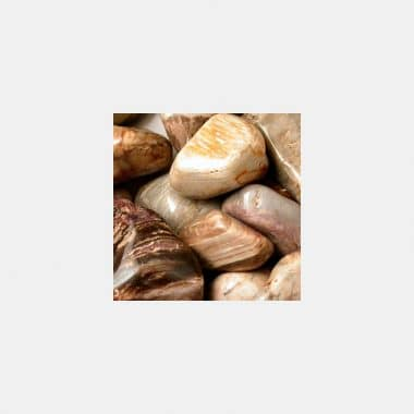 Trommelsteine in 70 Steinsorten (VE=0,5/1kg) - Versteinertes Holz VE=1kg