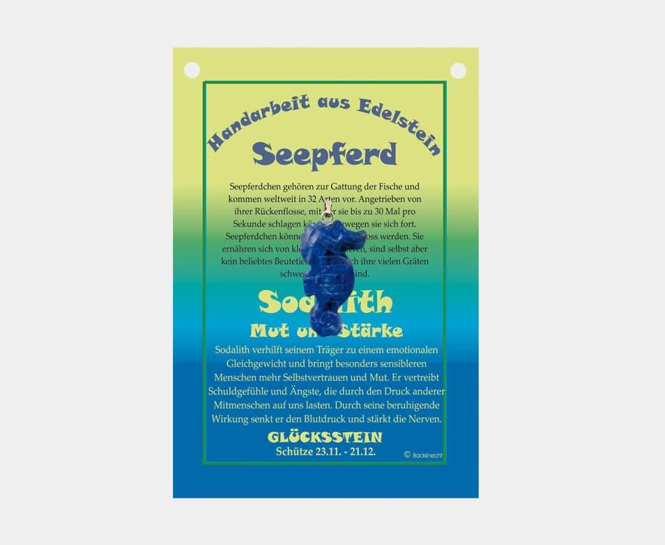 Abverkauf Restbestand! Seepferdchen (große Karte)